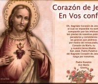 Oración a San Francisco de Asís para pedir un milagro